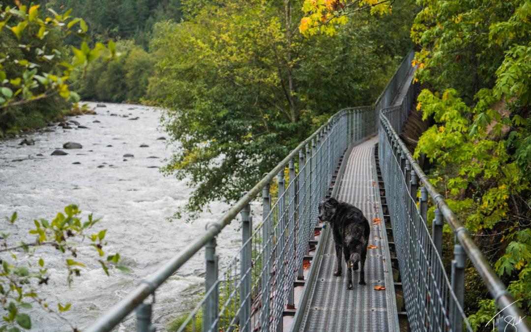 Hood River Pipeline Trailhead